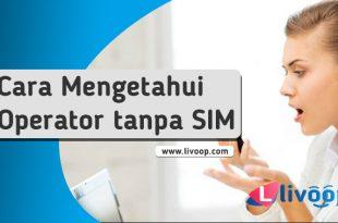Cara Mengetahui Operator Seluler iPhone Anda tanpa kartu SIM?